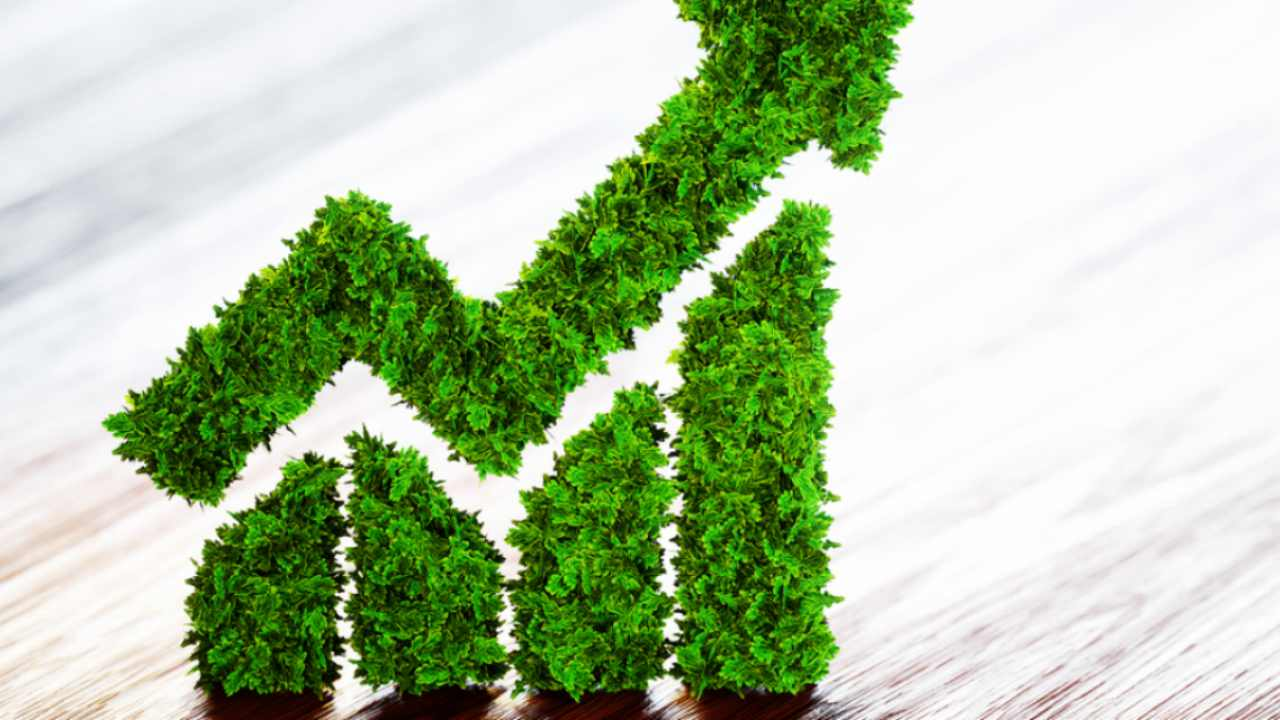 Financing a Green Future